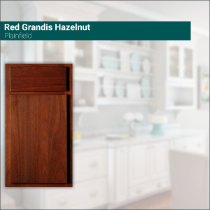 Plainfield Red Grandis Hazelnut